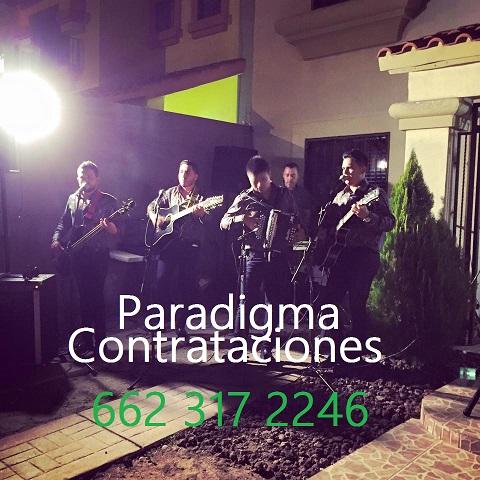 paradigma1contratos