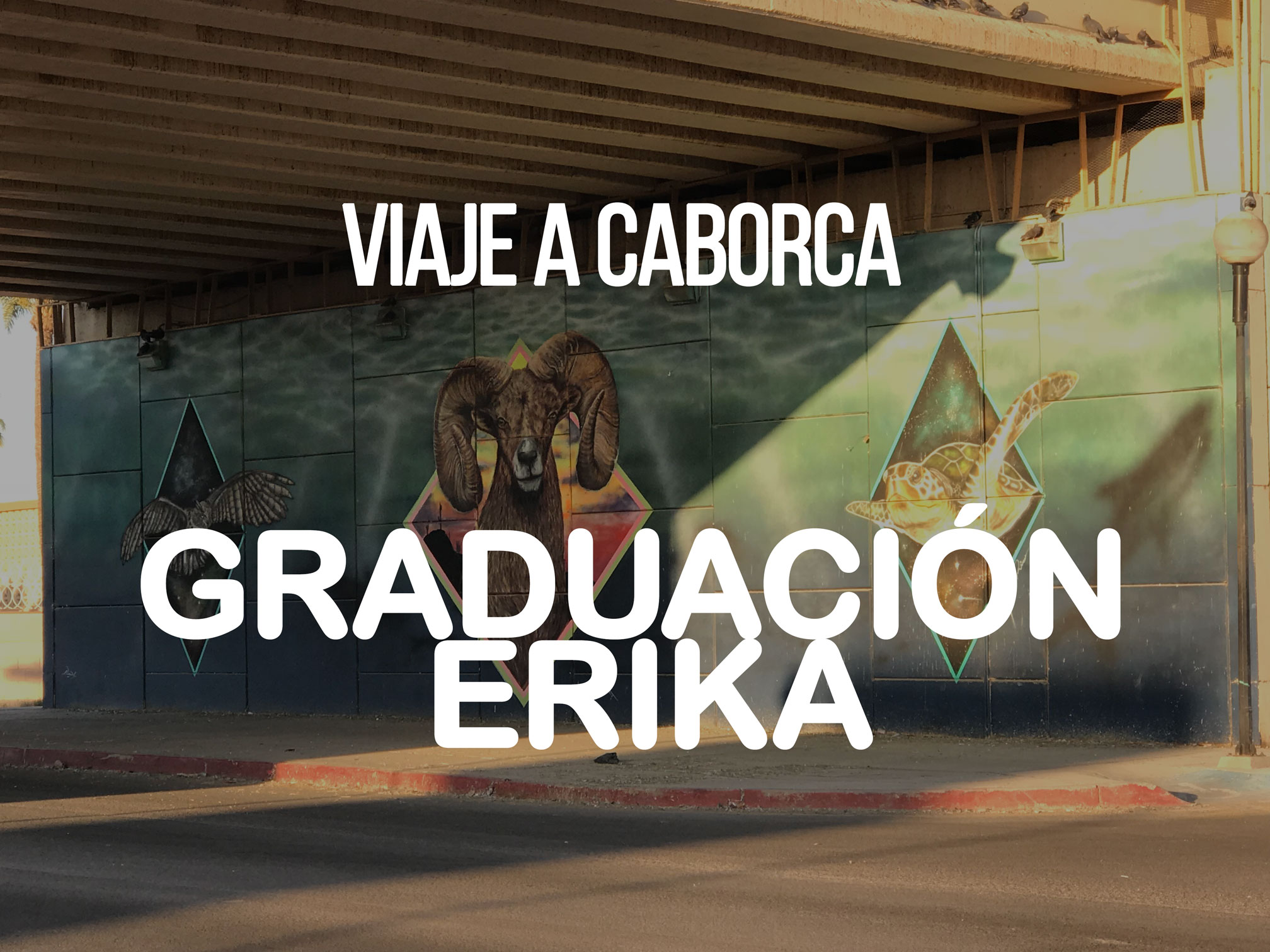 viaje a caborca graduacion erika