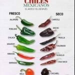 chiles mexicanos antes y después